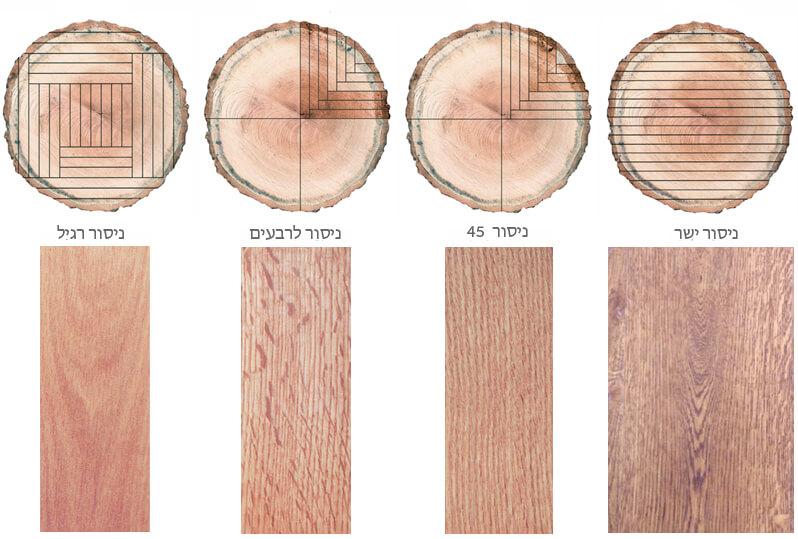 ניסור העץ משפיע על מראהו